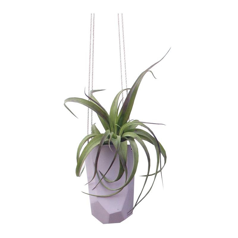 Pot à plantes, Bean & Bailey — Violet Lilas, Ponio