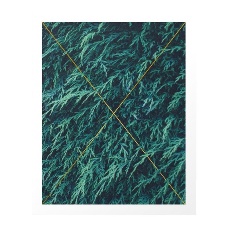Affiche, 83 Oranges — Vert Sapin, Ponio
