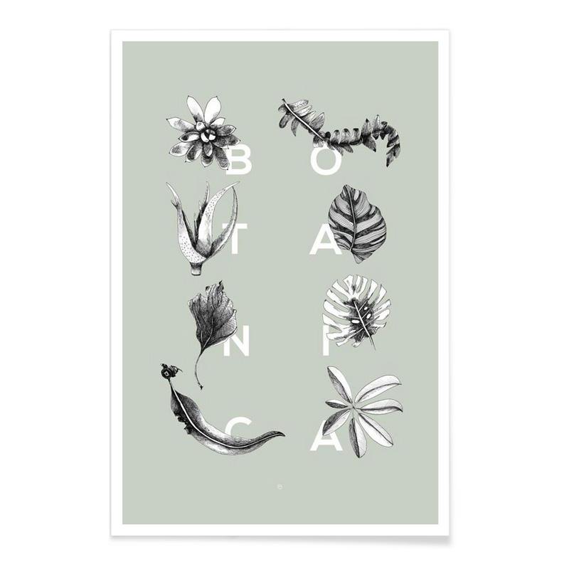 Affiche, Wood + ink — Vert Amande, Ponio