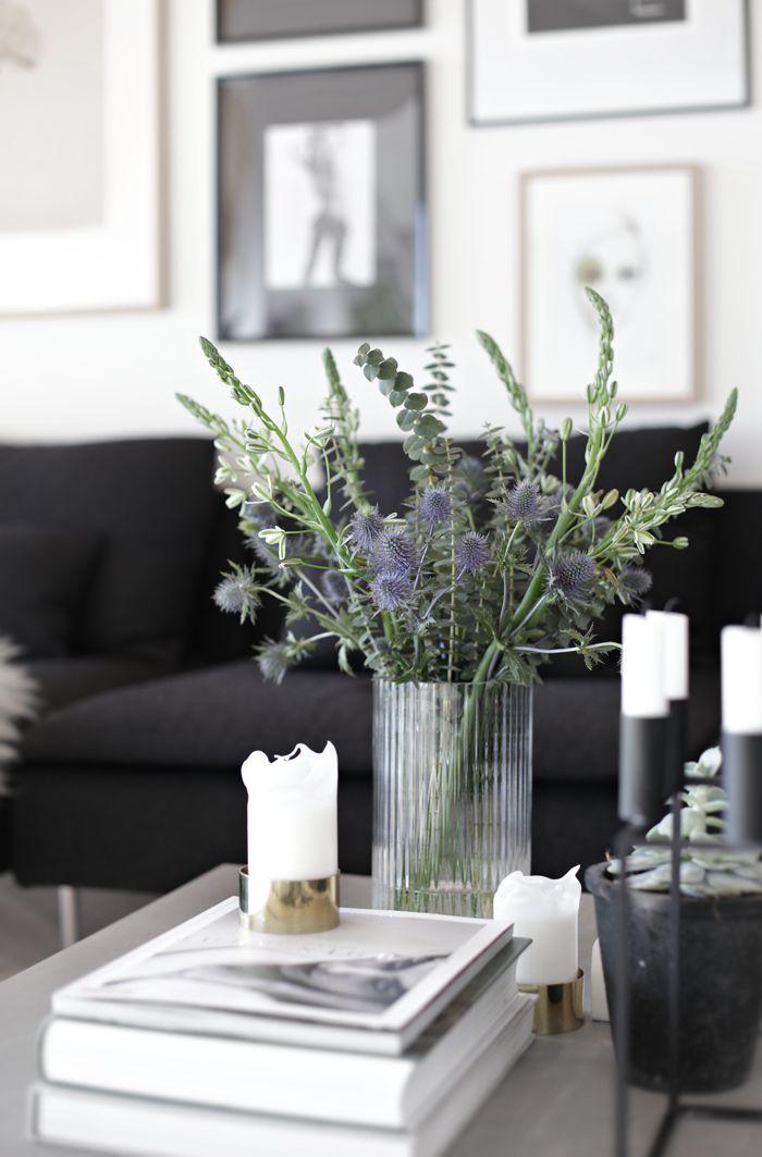 4 fleurs et plantes pour amener de la couleur chez soi | Ponio