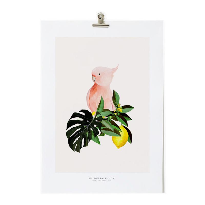 Affiche, Maison Baluchon— Rose Poudré, Ponio